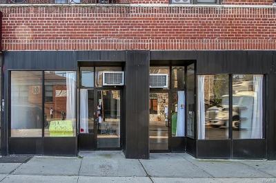 Commercial For Sale: 619 McLean Avenue #A&B