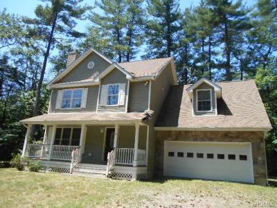Dutchess County Single Family Home For Sale: 43 Pine Woods Road