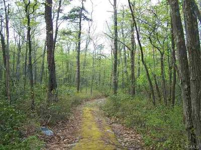 Sullivan County Residential Lots & Land For Sale: Cty Hwy 56