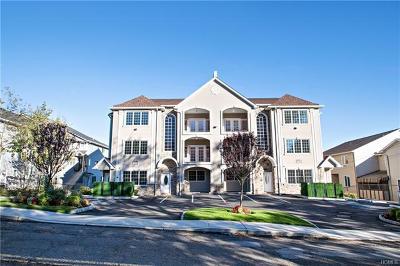 Condo/Townhouse For Sale: 142 Blauvelt Road #301