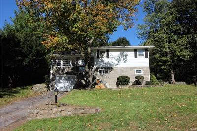 Dutchess County Single Family Home For Sale: 51 South Terrace