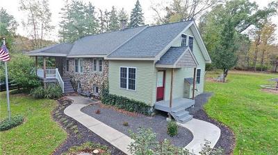 Middletown Single Family Home For Sale: 38 Van Burenville Road