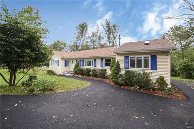 Putnam County Single Family Home For Sale: 25 Ludingtonville Road
