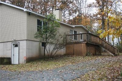 Callicoon Single Family Home For Sale: 89 Country Road