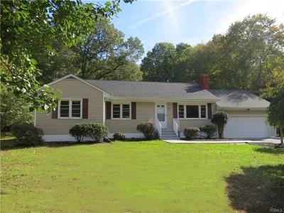 Dutchess County Single Family Home For Sale: 63 Lake Walton Road