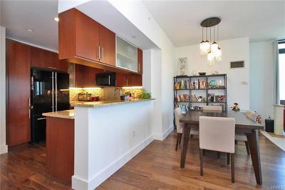 New Rochelle Rental For Rent: 175 Huguenot Street #1707