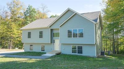 Sullivan County Single Family Home For Sale: 14 Roe Drive