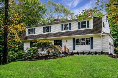 Mount Kisco Single Family Home For Sale: 28 James Road