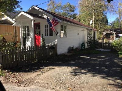 Westchester County Single Family Home For Sale: 28 Cottage Lane