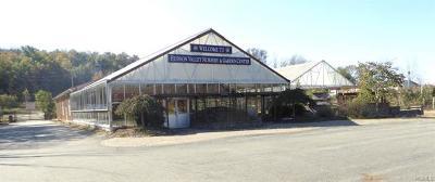 Goshen Commercial For Sale: 2709 Route 17m