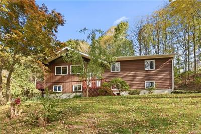 Yorktown Heights Single Family Home For Sale: 1446 White Hill Road