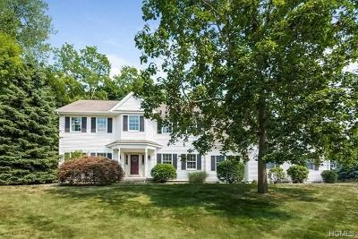 Dutchess County Single Family Home For Sale: 9 Trotter Lane