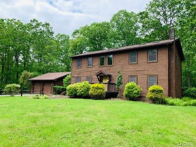 Callicoon Single Family Home For Sale: 16 Mountain Top Lane