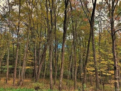Pine Bush NY Residential Lots & Land For Sale: $299,000