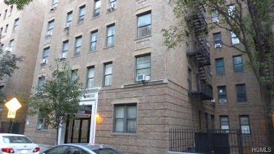 Co-Operative For Sale: 2156 Cruger Avenue #2J