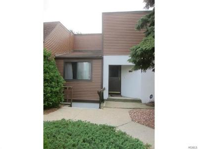 Newburgh Condo/Townhouse For Sale: 350 North Water Street #4-11