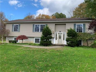 Bloomingburg Single Family Home For Sale: 118 Stone Schoolhouse Road