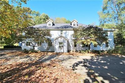 Pine Plains Single Family Home For Sale: 54 Ryan Road