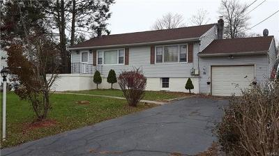 Putnam County Single Family Home For Sale: 63 Overlook Drive