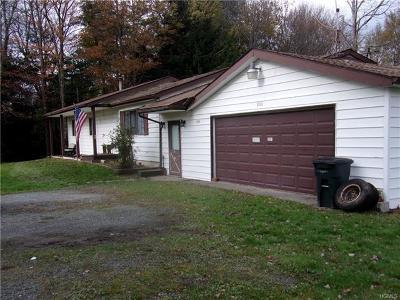 Forestburgh Single Family Home For Sale: 3001 State Route 42