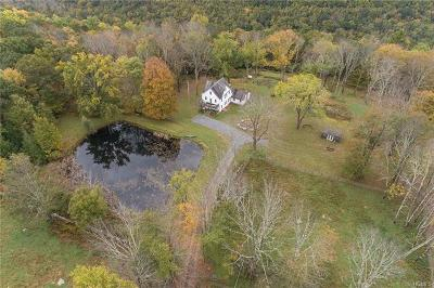 Sullivan County Single Family Home For Sale: 56 Mountain Top Road