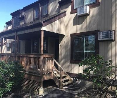 Harriman Condo/Townhouse For Sale: 3 Heritage Drive #F