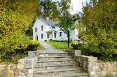 Dover Plains Single Family Home For Sale: 81 Cricket Hill Road