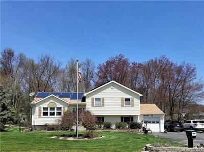 Washingtonville Single Family Home For Sale: 14 Canterbury Circle