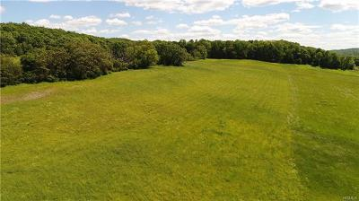 Millbrook Residential Lots & Land For Sale: 133 Woodstock Road