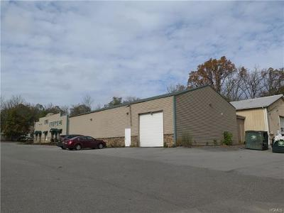 Sullivan County Commercial For Sale: 54 Main Street