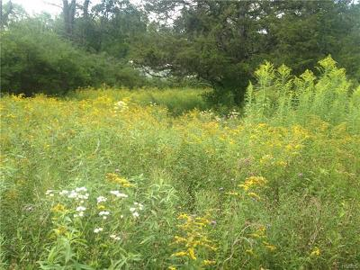 Fallsburg Residential Lots & Land For Sale: 33.1 Reynolds Road Tr 95