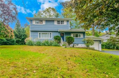 Mount Kisco Single Family Home For Sale: 20 Allan Lane