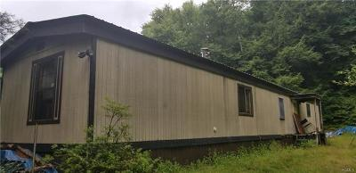 Narrowsburg NY Single Family Home For Sale: $49,900