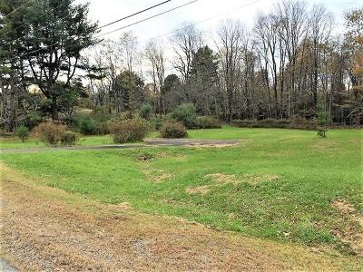 Sullivan County Residential Lots & Land For Sale: 3969 Nys Hwy 55