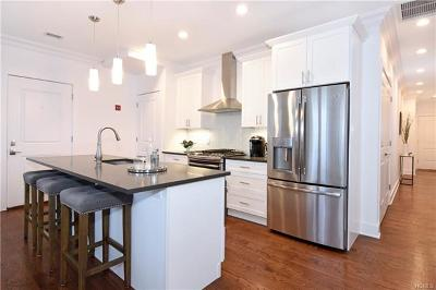 Bronx NY Condo/Townhouse For Sale: $848,000