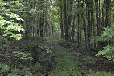 Delaware County Residential Lots & Land For Sale: Beers Brook Road