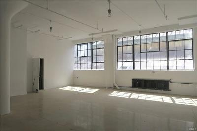 Dobbs Ferry Commercial For Sale: 145 Palisade Street #217