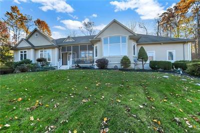 Suffern Single Family Home For Sale: 983 Haverstraw Road