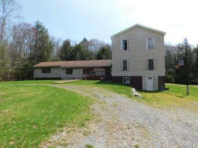 Parksville NY Single Family Home For Sale: $107,979