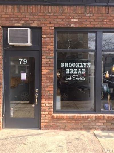 Nyack Commercial For Sale: 79 South Broadway