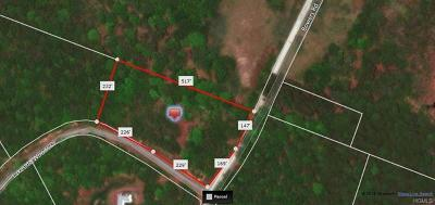 Residential Lots & Land For Sale: Tr 4