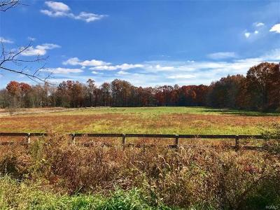 Pine Bush NY Residential Lots & Land For Sale: $124,900