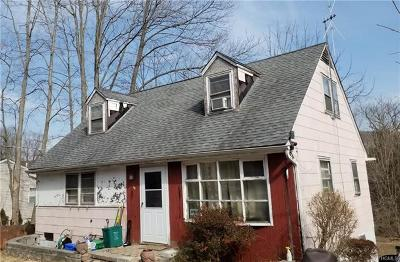 Rockland County Single Family Home For Sale: 28 Chestnut Avenue