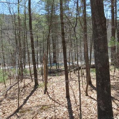Barryville NY Residential Lots & Land For Sale: $49,000