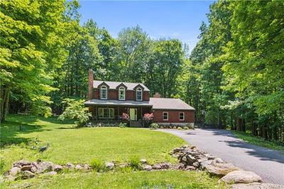 Westchester County Single Family Home For Sale: 14 Cat Ridge Road