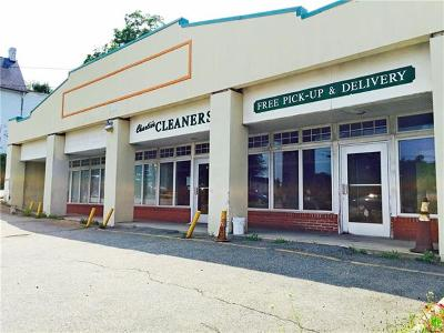 Rockland County Commercial For Sale: 2 South Highland Avenue