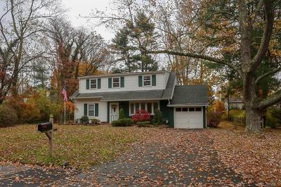 Rockland County Single Family Home For Sale: 12 Oldert Drive