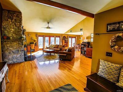 Pine Bush Single Family Home For Sale: 288 Jansen Road