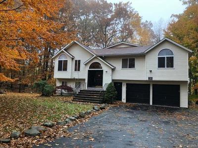 Rockland County Single Family Home For Sale: 18 Jon Leif Lane