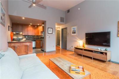 Condo/Townhouse For Sale: 75 McKinley Avenue #B2-7